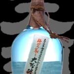 天領(てんりょう)「大吟醸」金賞受賞酒