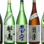 【父の日】日本酒知識不要!10本から選ぶだけのギフト【お中元】