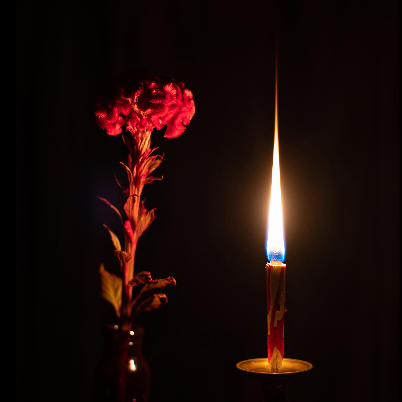 ケイトウと和蝋燭